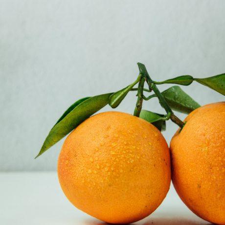 Orangenkokoscreme mit Minze