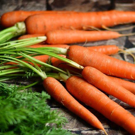 Karottenpüreesuppe (Potage Crécy)