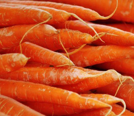 Morosche Karottensuppe, DAS Original