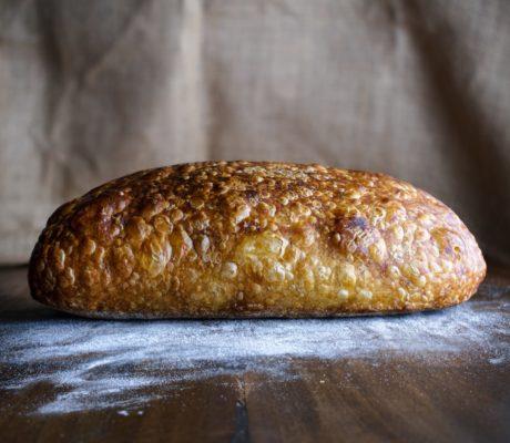 Einfache Käsebrötchen